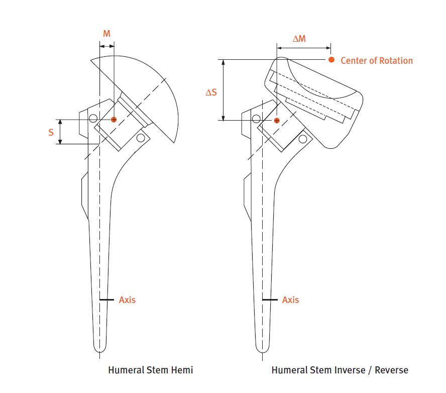 Anatomical Shoulder Inverse/Reverse System